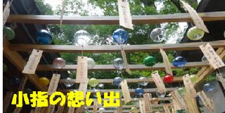 kawagoehikawajinjya0809.png
